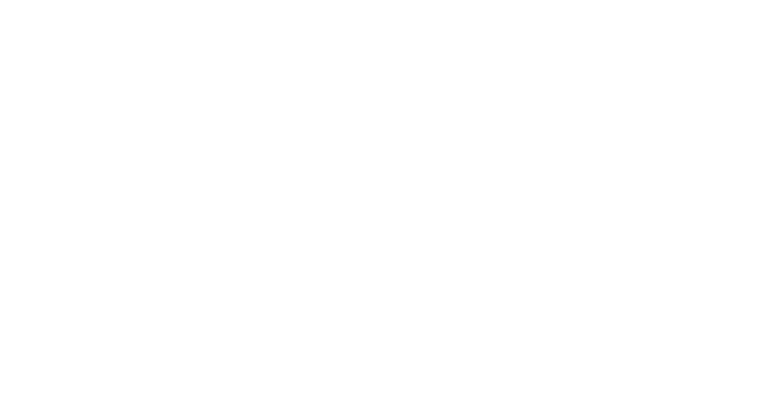 stowe_family_law