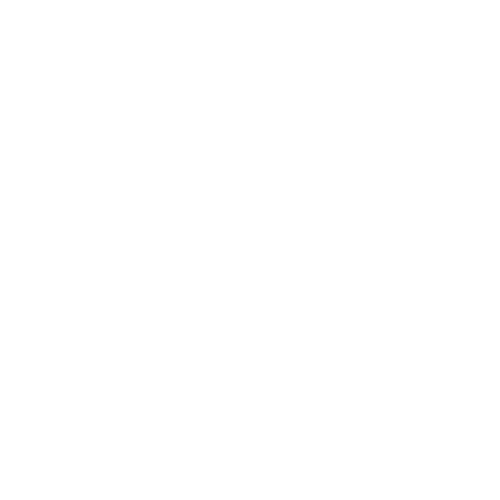 Network Plus_WHT